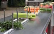 Машины и линии  для обработки овощей и производства салатов